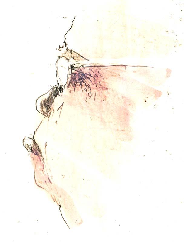 Bild (10)
