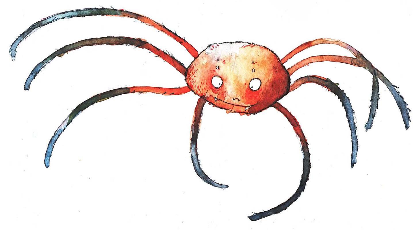 Spinne-groß