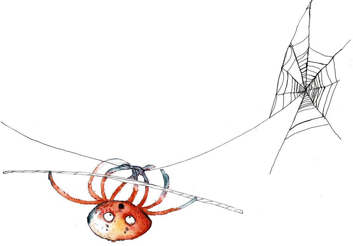 Spinne turnt